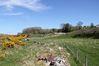 Ballachy Farm