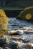 Rapids on the Dunbeath Water